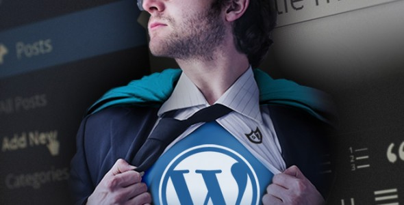 Gezocht: WordPress-held